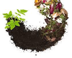 Kas tinka kompostavimui?